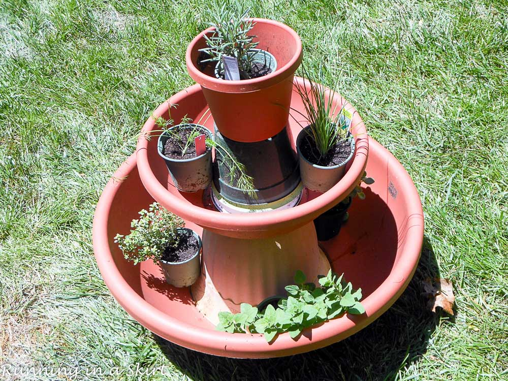Photo showing how to put the herbs in the pot.