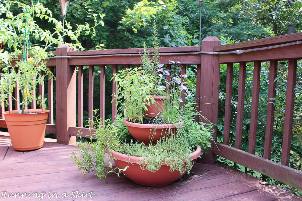 Finished shot of grown in herb tower garden sitting on a wood deck.