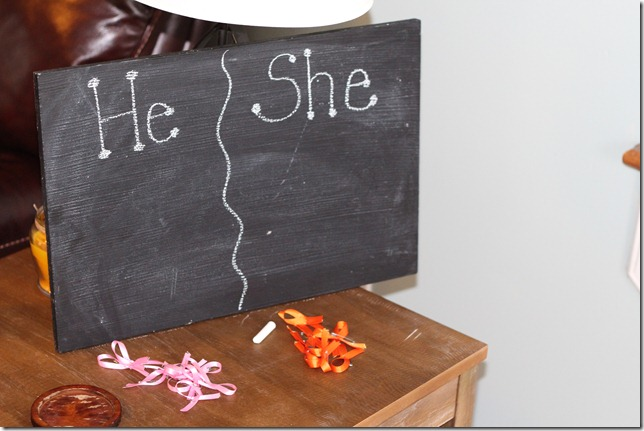 Baby Gender Reveal Party 015