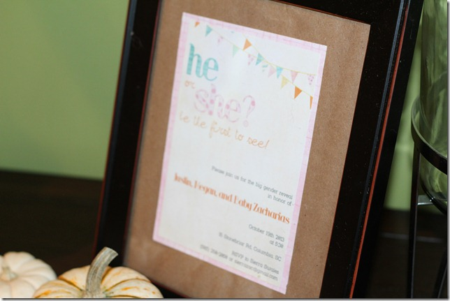 Baby Gender Reveal Party 022
