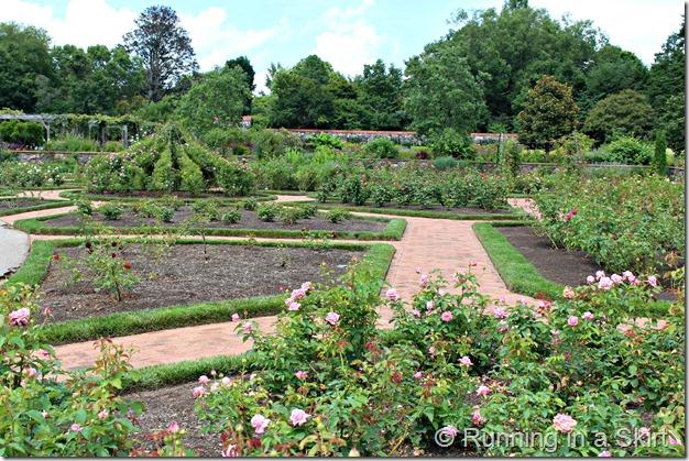 Bilmore_Gardens_July