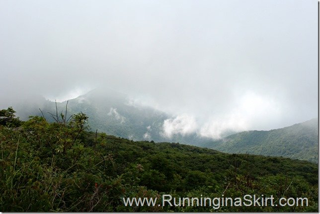 craggy_pinacle_fog_view