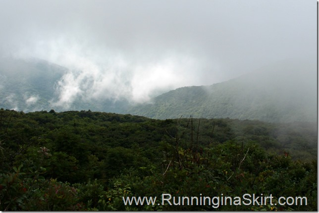 craggy_pinacle_view_fog