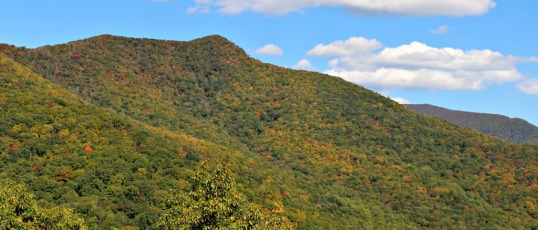 A Trip Along the Blue Ridge Parkway in Fall