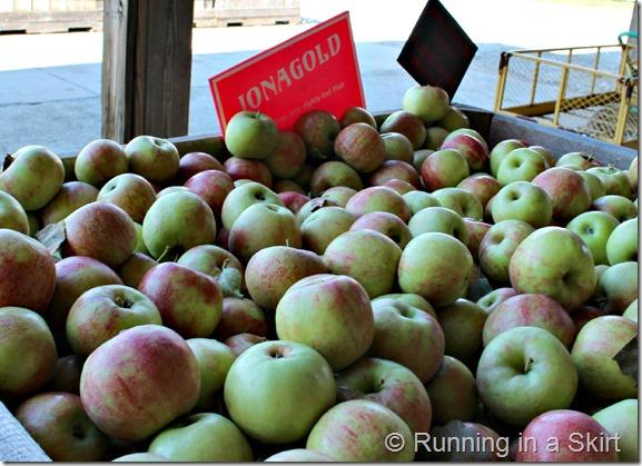apple-farm-5
