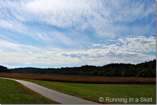 biltmore-estate-fall-running-fall