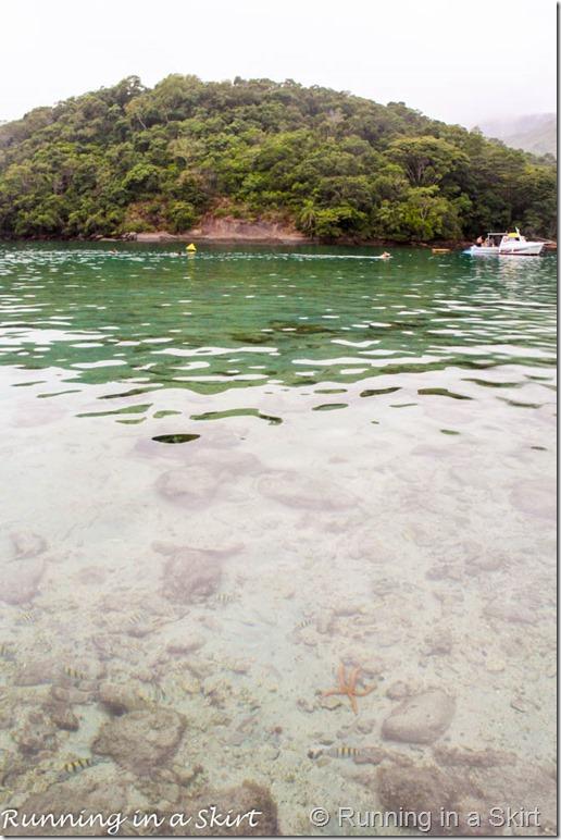 Ilha Grande Blog-22