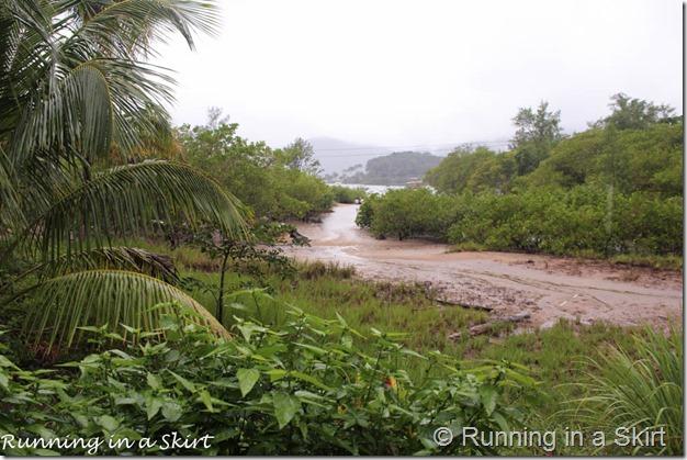 Ilha Grande Blog-28