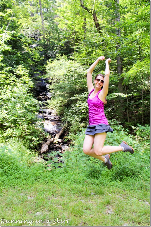 pisgah forest waterfalls log hollow falls