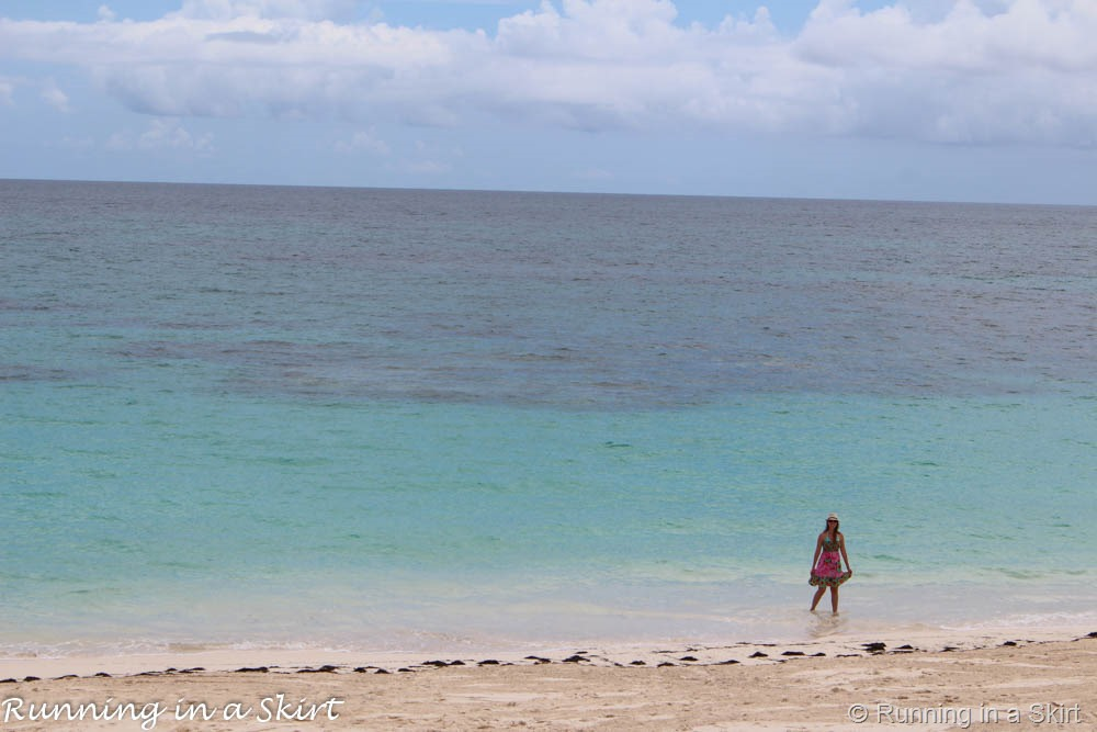 BahamasElbowCayAugust201568933