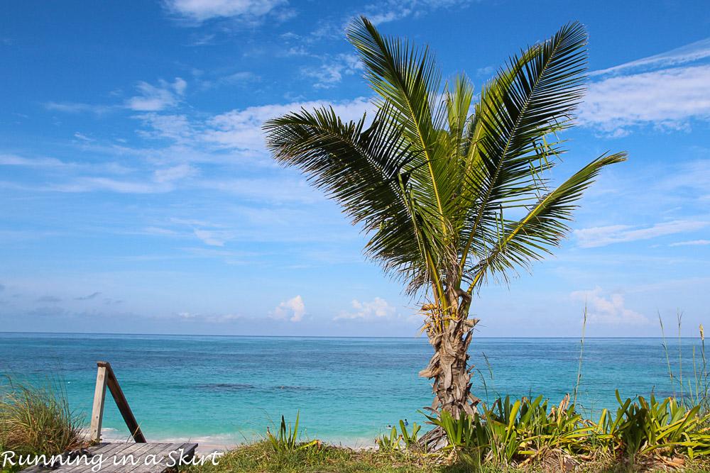 The Abacos Bahamas-2-1