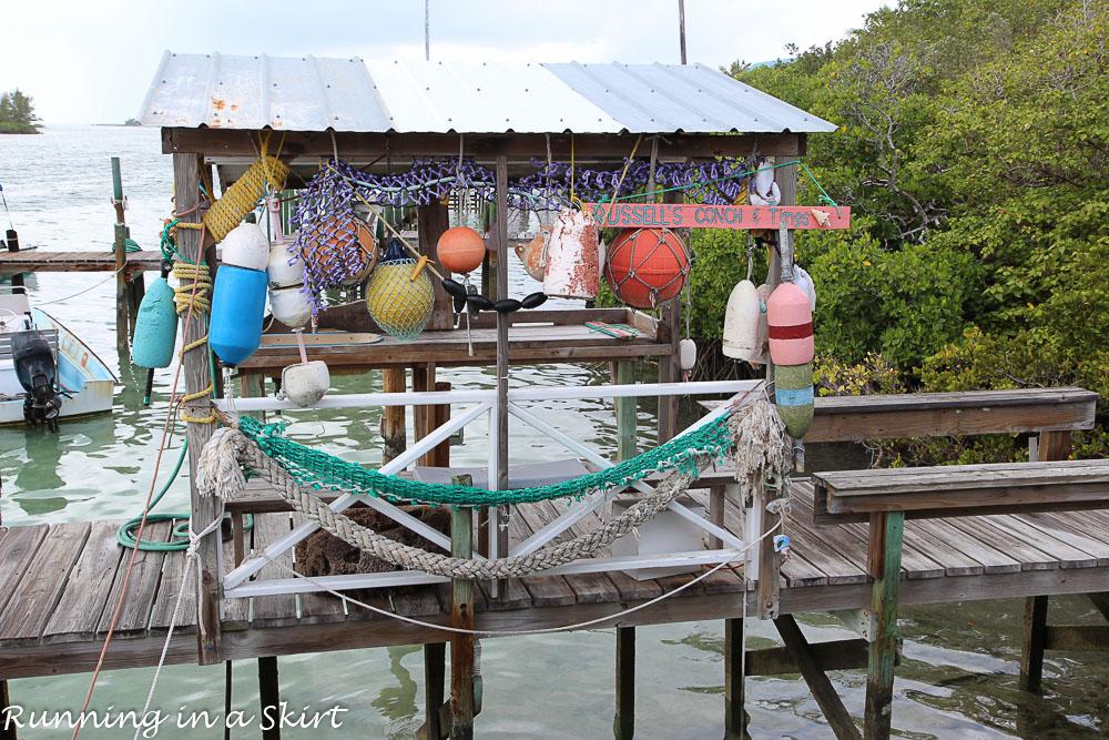 The Abacos Bahamas-81-24