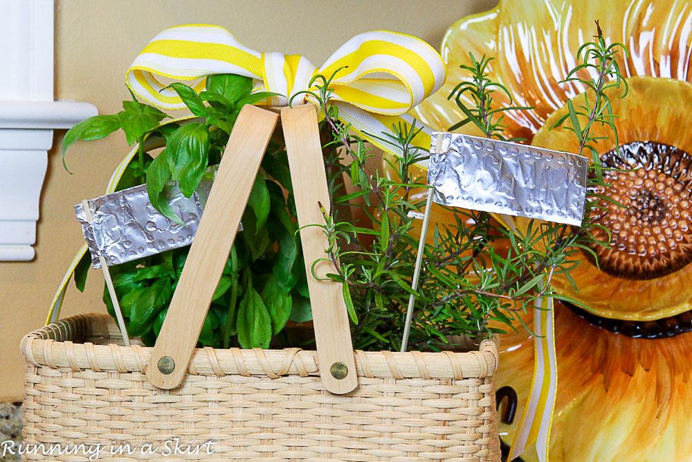 How To Make An Indoor Herb Garden Running In A Skirt