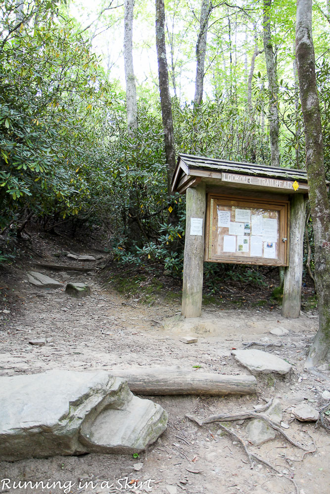lookout-mountain-montreat-hiking-1