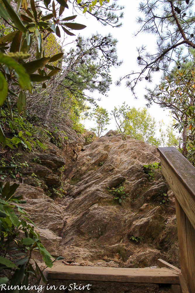 lookout-mountain-montreat-hiking-8