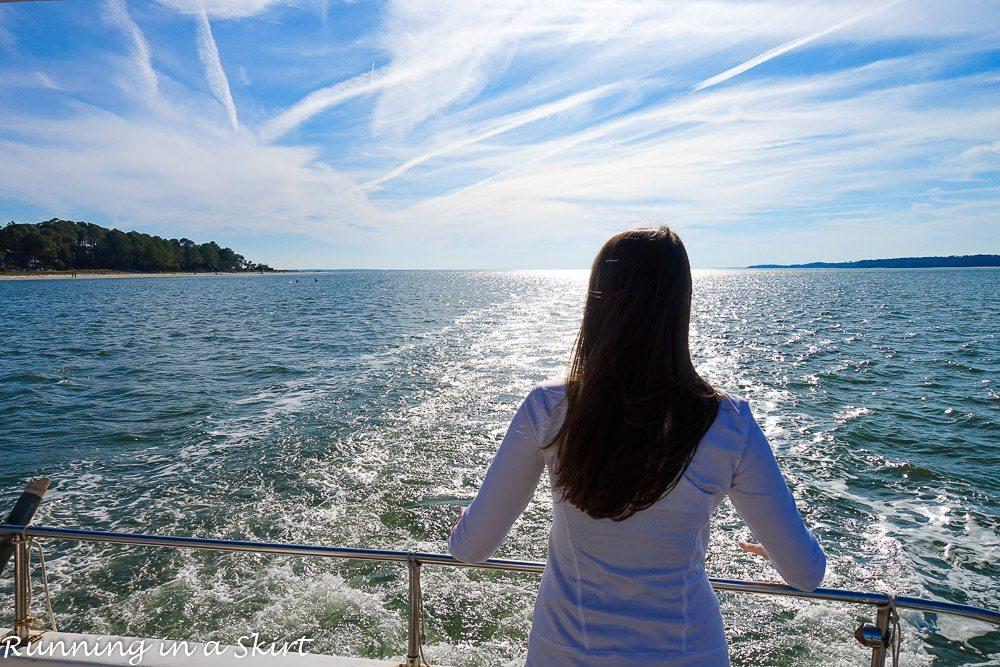 Hilton Head Island Dolphin Tour