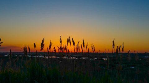 Hilton Head Island Spring Break