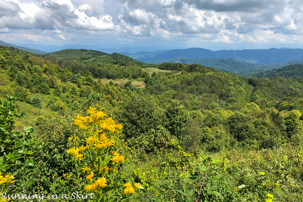 Max Patch Hike near Asheville NC