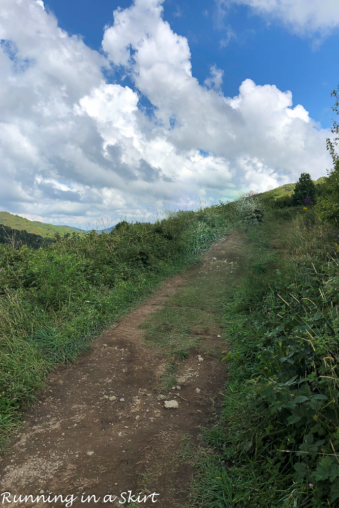 Slope to the top of Max Patch Hike near Asheville NC