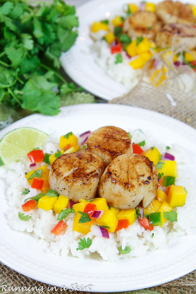 Seared Scallops on mango salsa and coconut rice on a white plate.