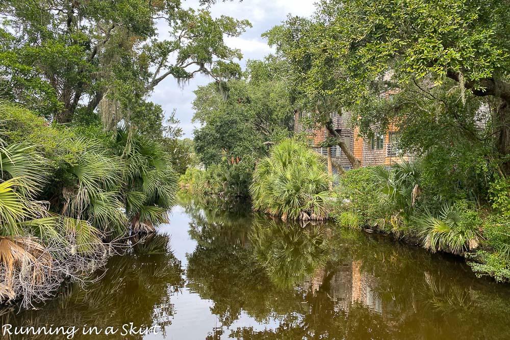 Marsh on Kiawah Island South Carolina.