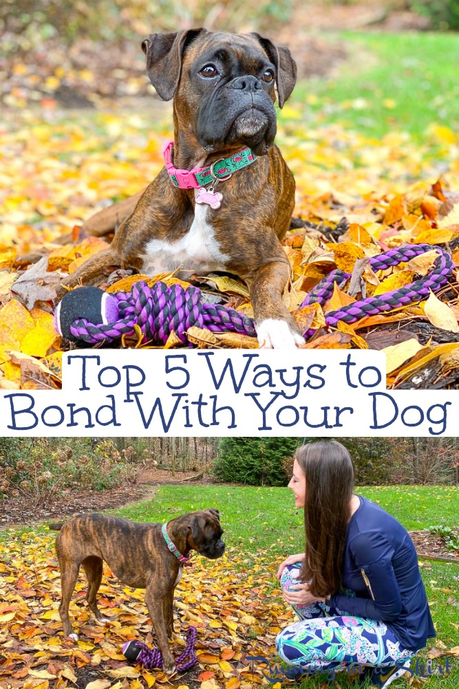 How to Bond with Your Dog - top ways on how to build a strong bond with your dog and let them know you care. Includes tips on how to help your dogs mental and physical health. / Running in a Skirt #AD #PackedWeekend #ThePackonPrime via @juliewunder