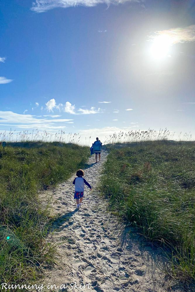 Sand dune Amelia Island.