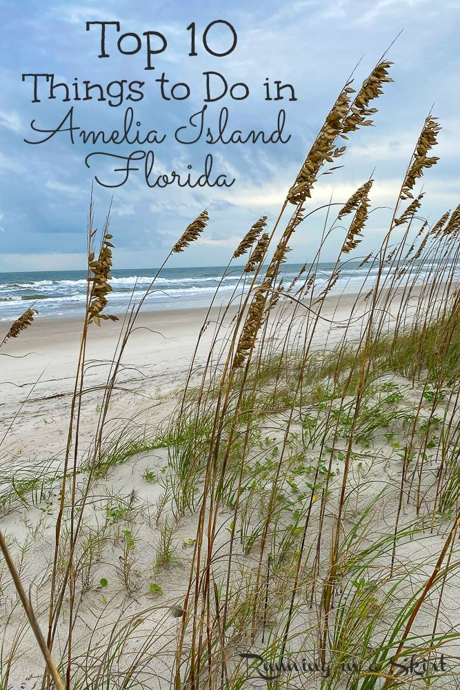What to do in Amelia Island Pinterest pin