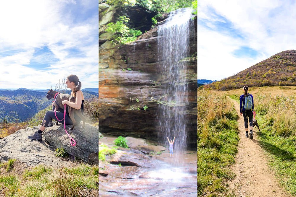 Collage of some of the best hikes near Asheville NC.