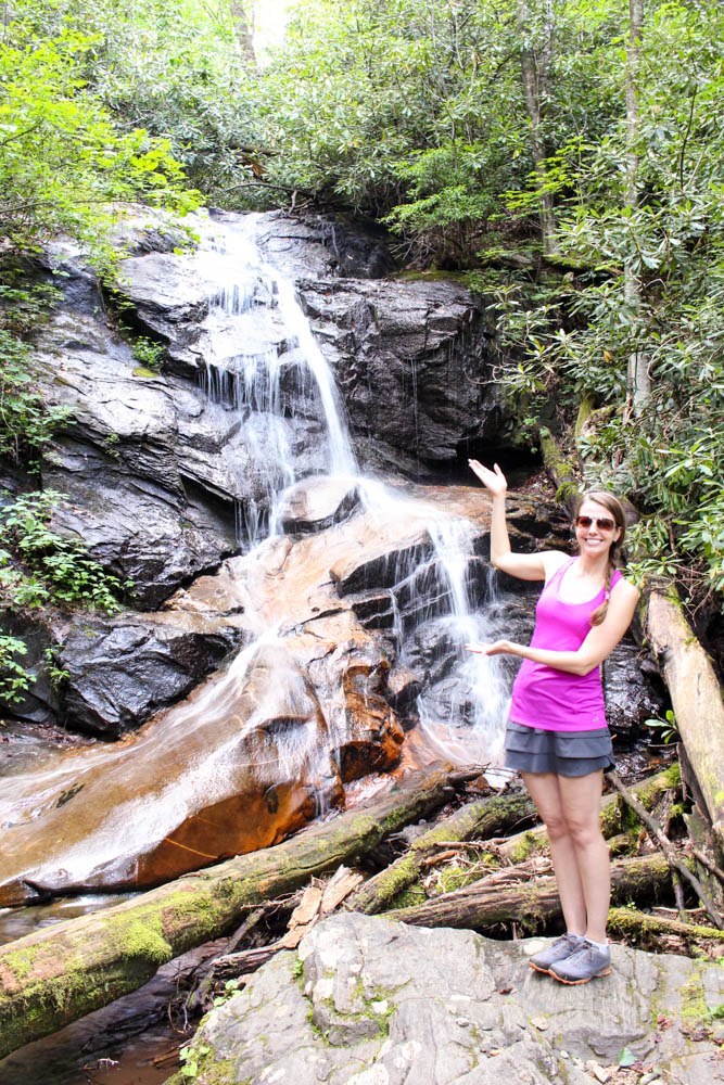 Log Hollow Falls in the Pisgah National Forest.