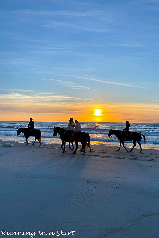 Horseback Riding Amelia Island