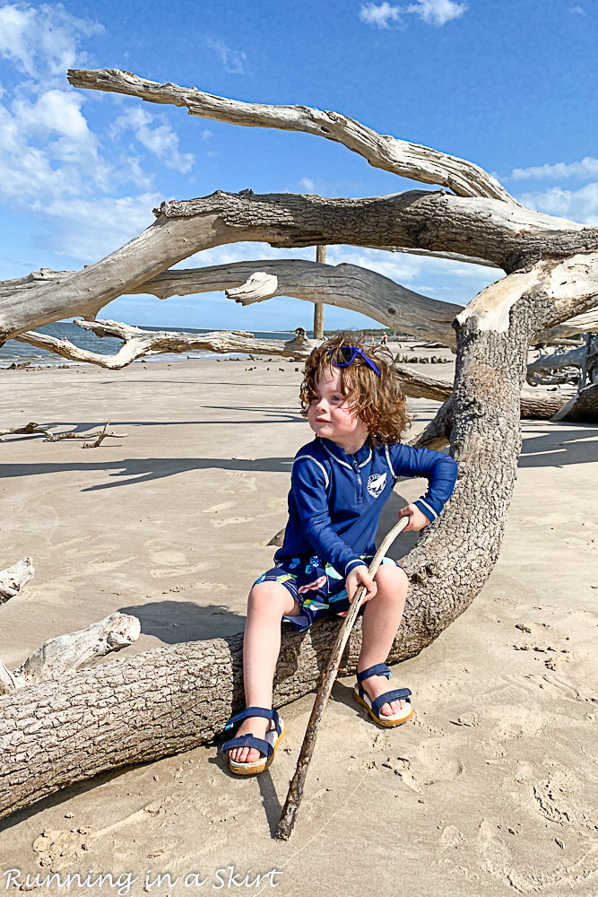 Boy playing in the driftwood.