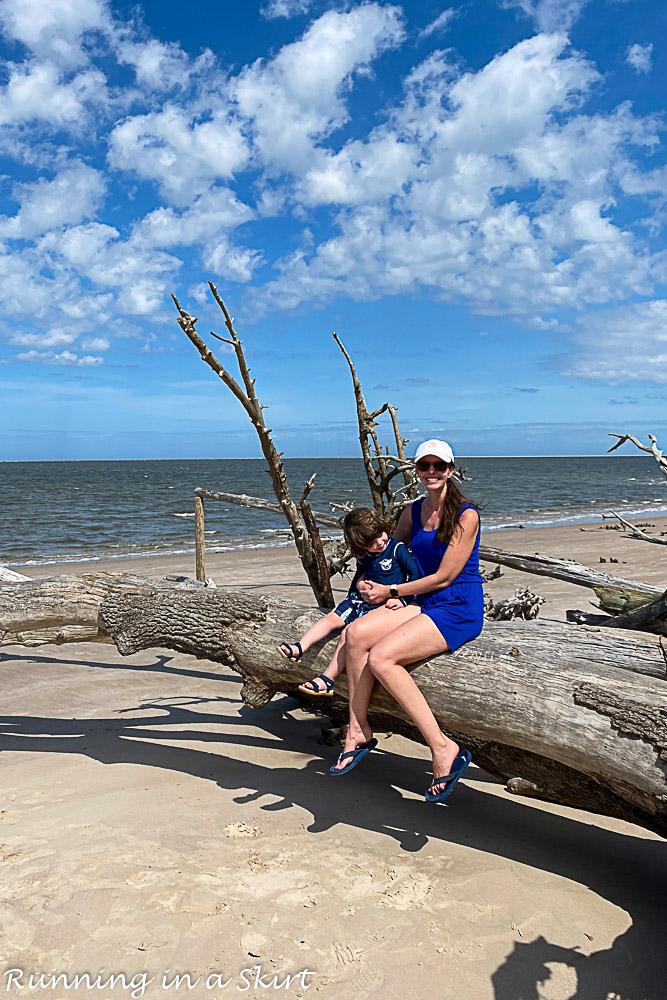 Mom holding boy on driftwood tree.