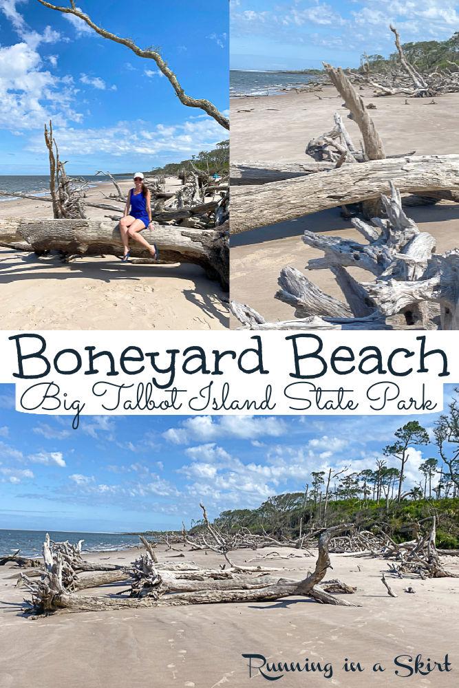 Boneyard Beach Florida - Big Talbot Island State Park via @juliewunder