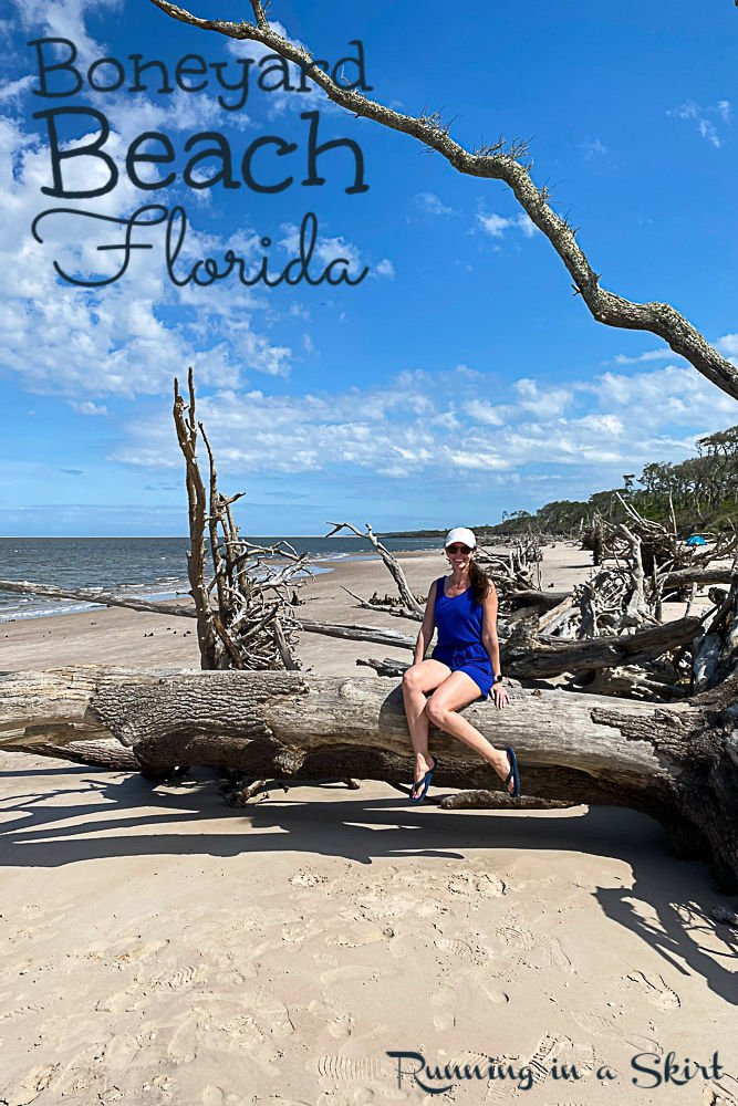 Boneyard Beach Florida Big Talbot Island State Park pin